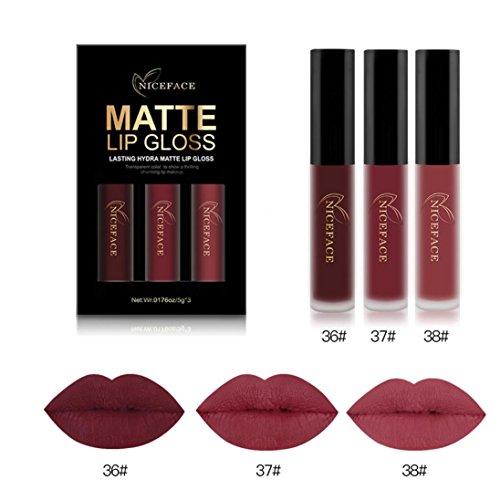 Btruely 3PCS Lippenstift Dauerhafte Lipstick Langlebiger Wasserdichter Matte Flüssigkeit Lippenstift Wasserdichtes Lippenglanz Make up Konturenstifte Kosmetika Set (I)