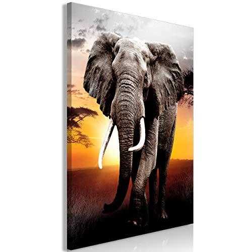 decomonkey Bilder Elefant 40x60 cm 1 Teilig Leinwandbilder Bild auf Leinwand Vlies Wandbild Kunstdruck Wanddeko Wand Wohnzimmer Wanddekoration Deko Afrika Tiere