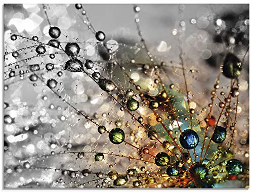 Artland Glasbilder Wandbild Glas Bild einteilig 80x60 cm Querformat Natur Botanik Blumen Pusteblume Frühling Wassertropfen Modern T9IN