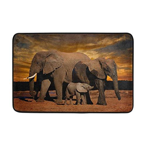 ALAZA Fußmatte für den Innen- und Außenbereich, Motiv: Afrikanischer Elefant, Sonnenuntergang, 60 x 40 cm