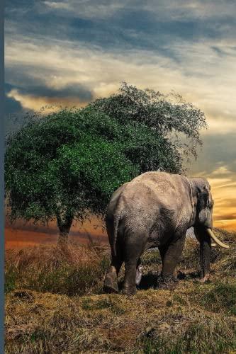 Notizbuch - Elefant Sonnenuntergang - Bulletjournal, Ideenjournal, Notizheft, Memorykeeper - 120 Seiten dotted