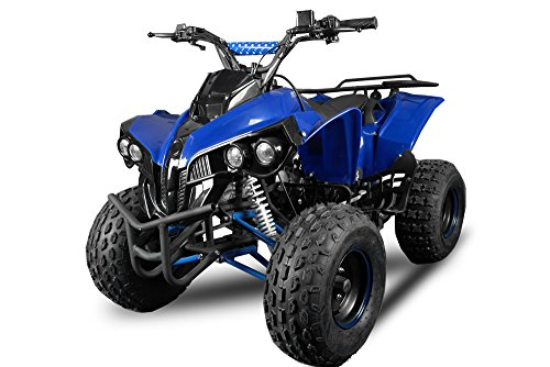 WARRIOR 2012 Edition Quad ATV 125 ccm 1-Zylinder, 4-Takt, luftgekühlt Metallic