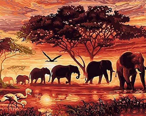 Fuumuui DIY Malen Nach Zahlen-Vorgedruckt Leinwand-Ölgemälde Geschenk für Erwachsene Kinder Kits Home Haus Dekor - Sonnenuntergang Elefanten 40*50 cm